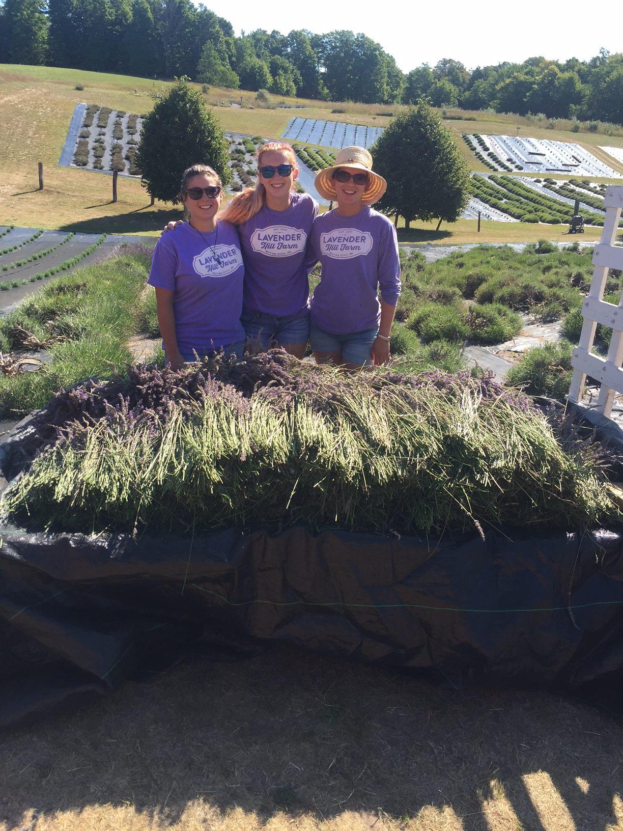 Our Abundant Harvest